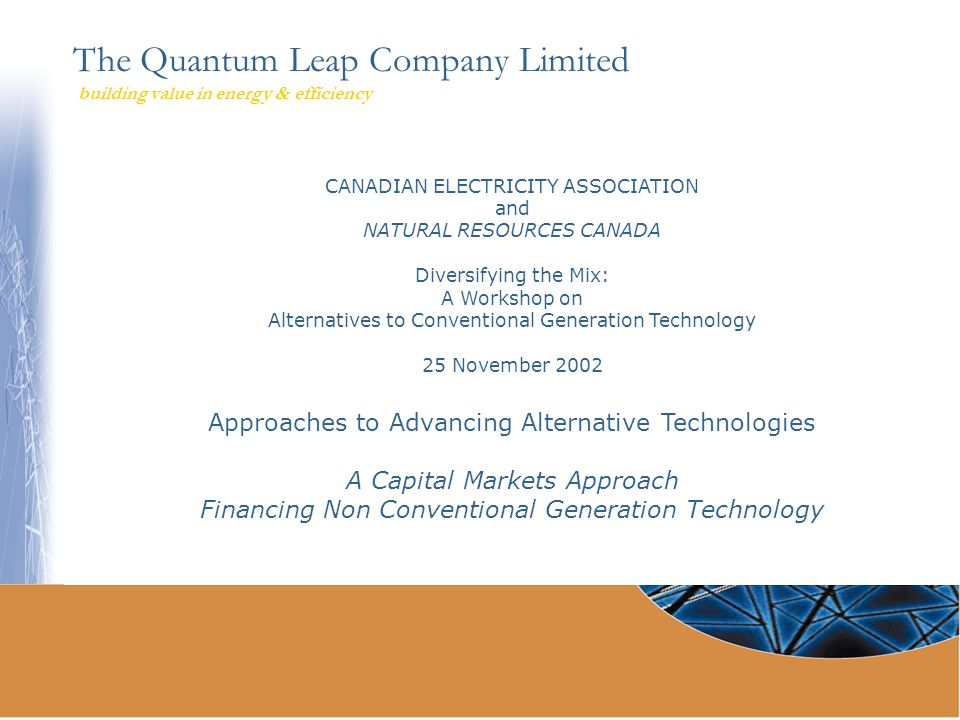 The Quantum Leap Company Limited building value in energy & efficiency CANADIAN ELECTRICITY ASSOCIATION and NATURAL RESOURCES CANADA Diversifying the