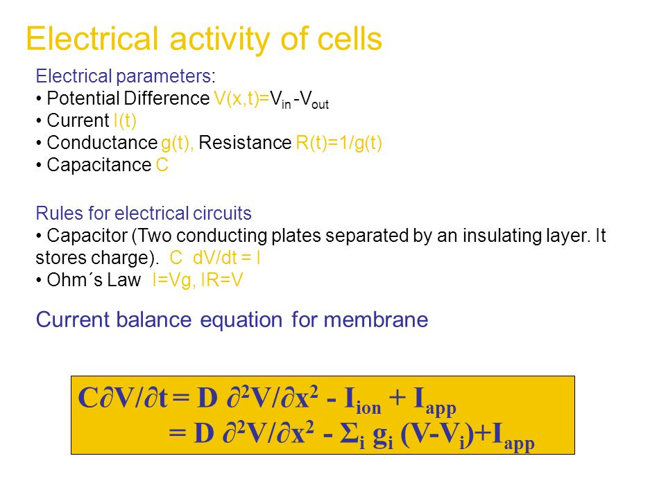 Electrical parameters: Potential Difference V(x,t)=V in -V out Current I(t) Conductance g(t), Resistance R(t)=1/g(t) Capacitance C Rules for electrical circuits Capacitor (Two conducting plates separated by an insulating layer.