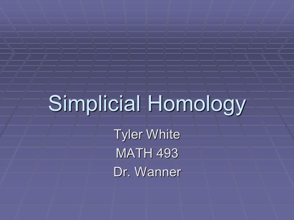 Simplicial Homology Tyler White MATH 493 Dr. Wanner