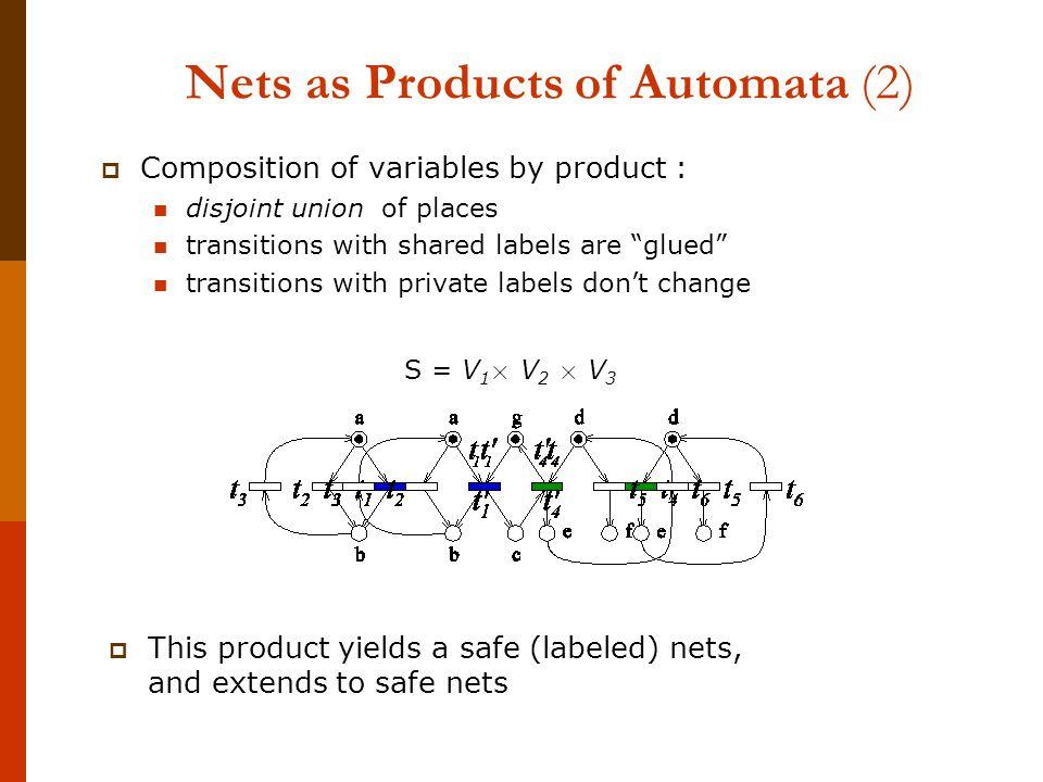 Distributed computations extract summary nets