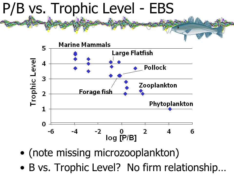 P/B vs. Trophic Level - EBS (note missing microzooplankton) B vs.