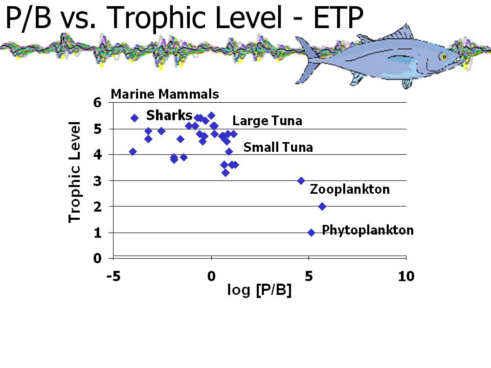 P/B vs. Trophic Level - ETP