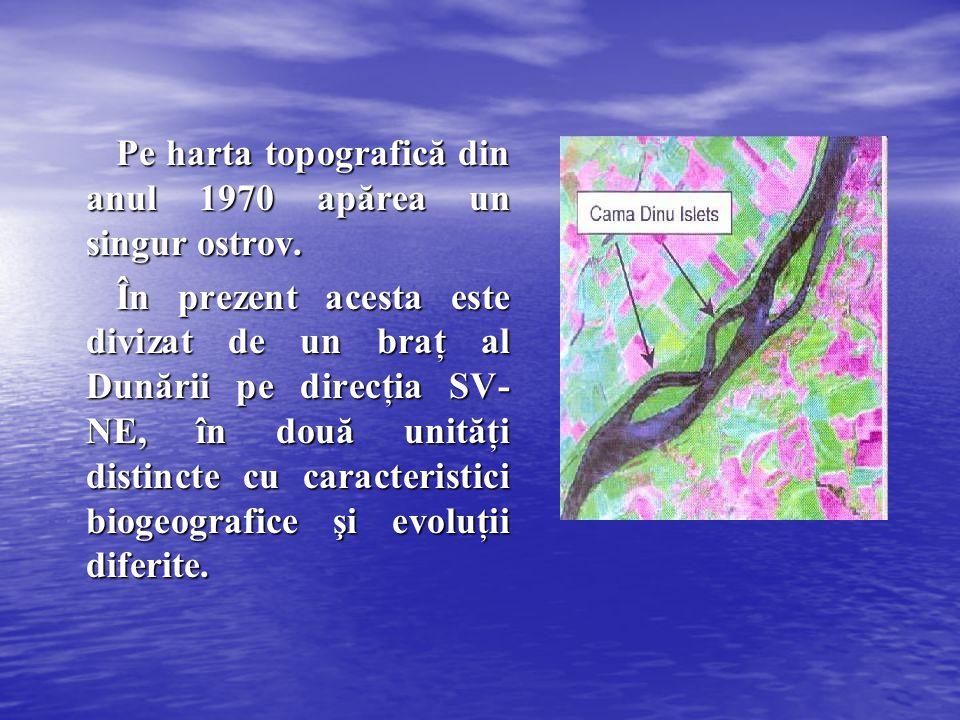 Pe harta topografică din anul 1970 apărea un singur ostrov. În prezent acesta este divizat de un braţ al Dunării pe direcţia SV- NE, în două unităţi d