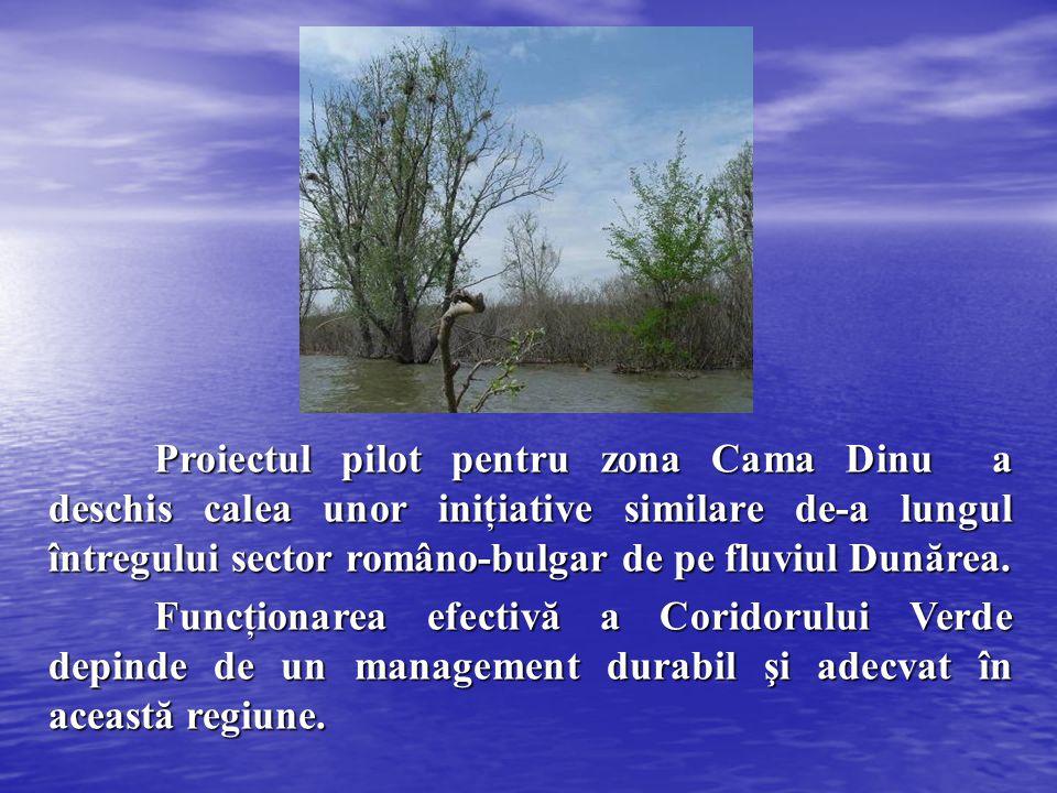 Proiectul pilot pentru zona Cama Dinu a deschis calea unor iniţiative similare de-a lungul întregului sector româno-bulgar de pe fluviul Dunărea. Func