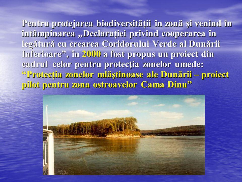 Pentru protejarea biodiversităţii în zonă şi venind în întâmpinarea,,Declaraţiei privind cooperarea în legătură cu crearea Coridorului Verde al Dunări