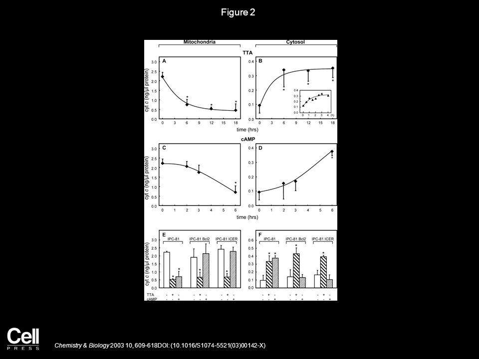 Figure 2 Chemistry & Biology 2003 10, 609-618DOI: (10.1016/S1074-5521(03)00142-X)
