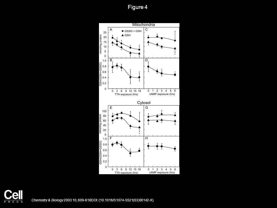 Figure 4 Chemistry & Biology 2003 10, 609-618DOI: (10.1016/S1074-5521(03)00142-X)
