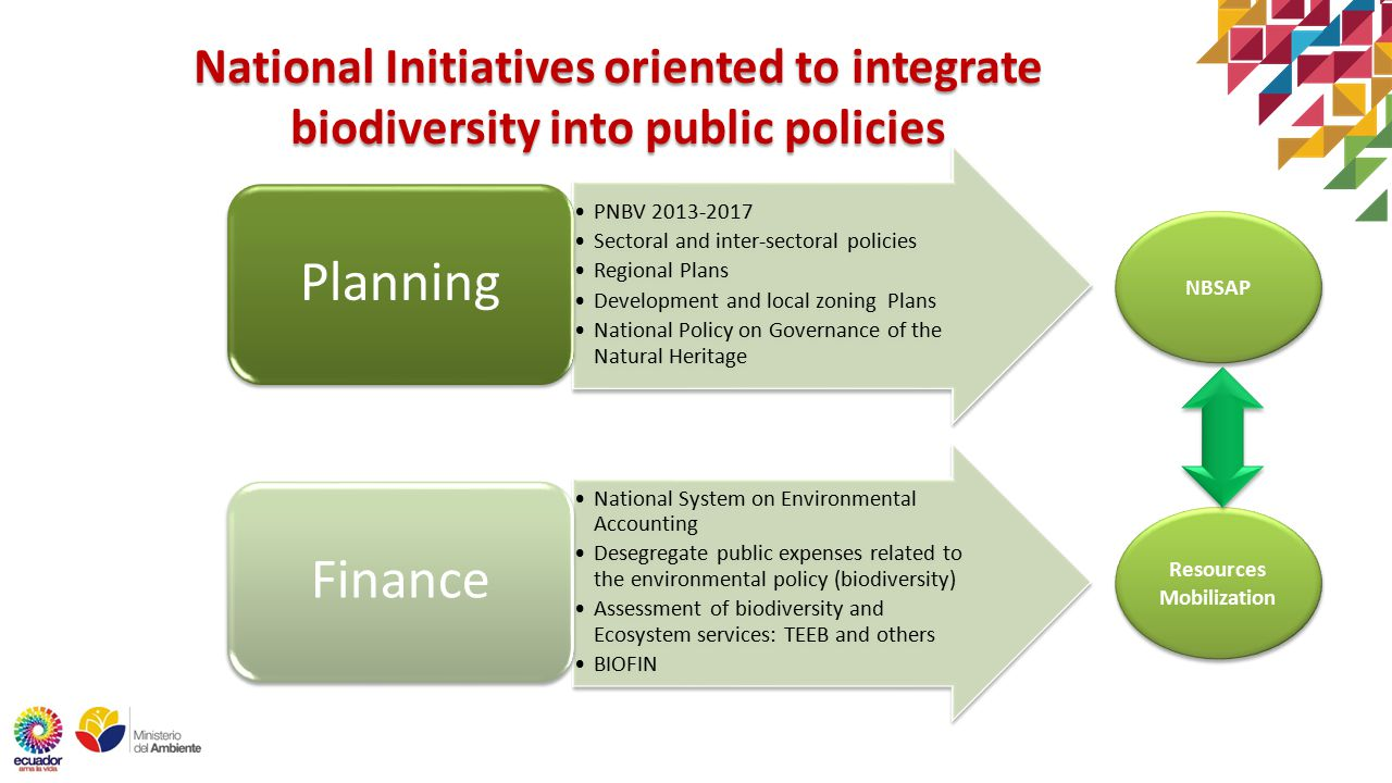 PNBV Sectoral and inter-sectoral policies Regional Plans Development and local zoning Plans National Policy on Governance of the Natural Heritage Planning National System on Environmental Accounting Desegregate public expenses related to the environmental policy (biodiversity) Assessment of biodiversity and Ecosystem services: TEEB and others BIOFIN Finance National Initiatives oriented to integrate biodiversity into public policies NBSAP Resources Mobilization