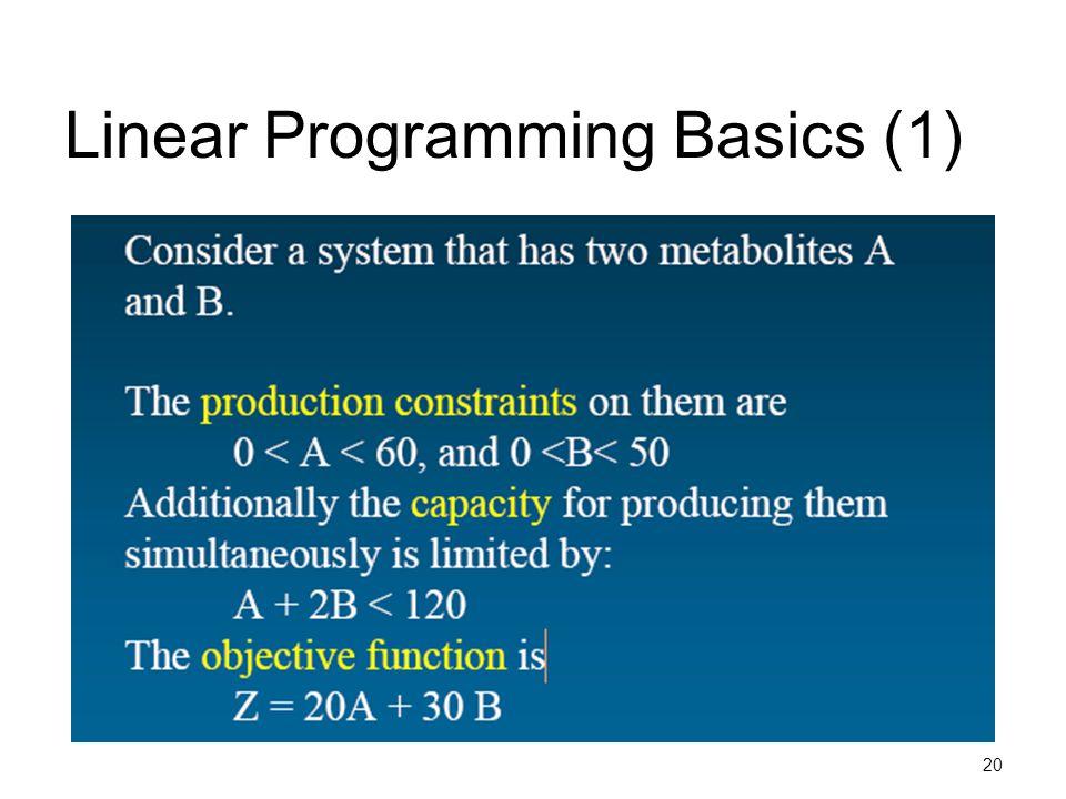 20 Linear Programming Basics (1)