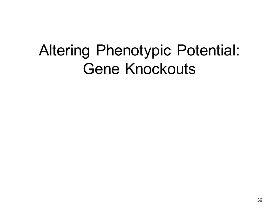 39 Altering Phenotypic Potential: Gene Knockouts