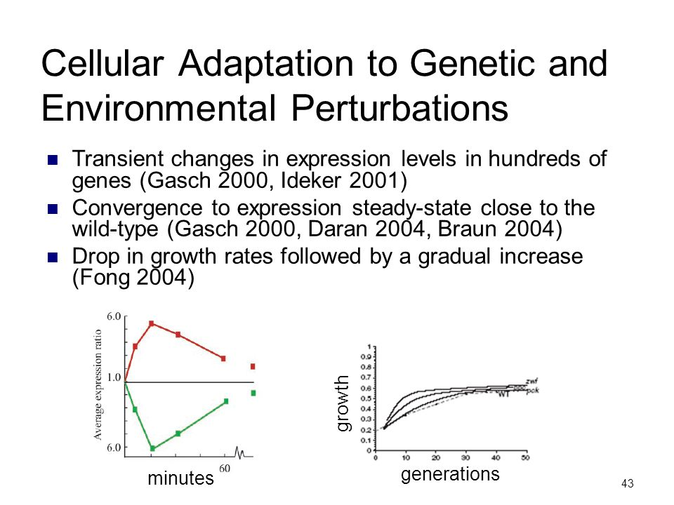 43 Cellular Adaptation to Genetic and Environmental Perturbations Transient changes in expression levels in hundreds of genes (Gasch 2000, Ideker 2001