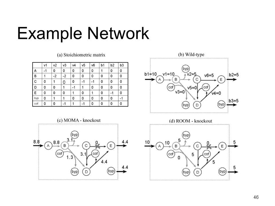 46 Example Network