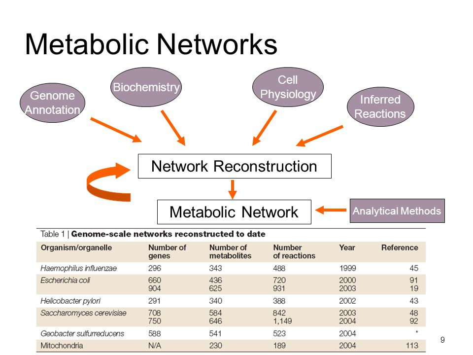 9 Metabolic Networks Network Reconstruction Genome Annotation Biochemistry Cell Physiology Inferred Reactions Metabolic Network Analytical Methods