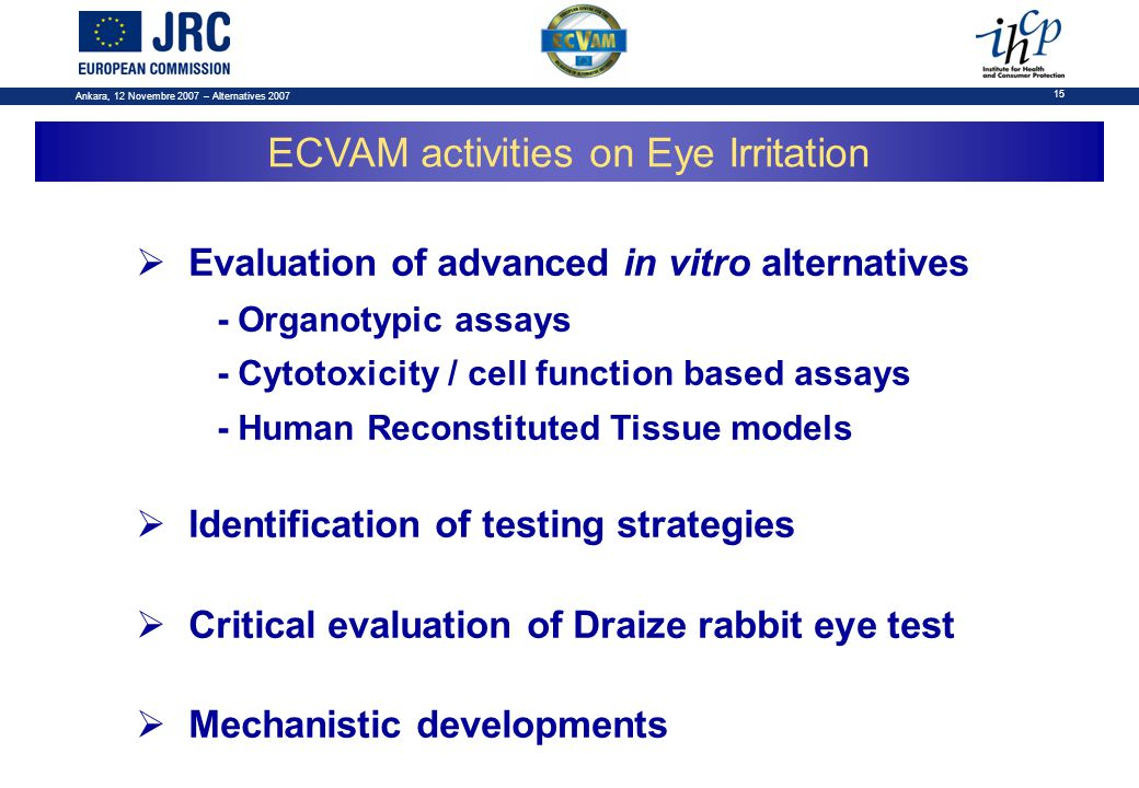 Ankara, 12 Novembre 2007 – Alternatives 2007 15  Evaluation of advanced in vitro alternatives - Organotypic assays - Cytotoxicity / cell function based assays - Human Reconstituted Tissue models  Identification of testing strategies  Critical evaluation of Draize rabbit eye test  Mechanistic developments ECVAM activities on Eye Irritation