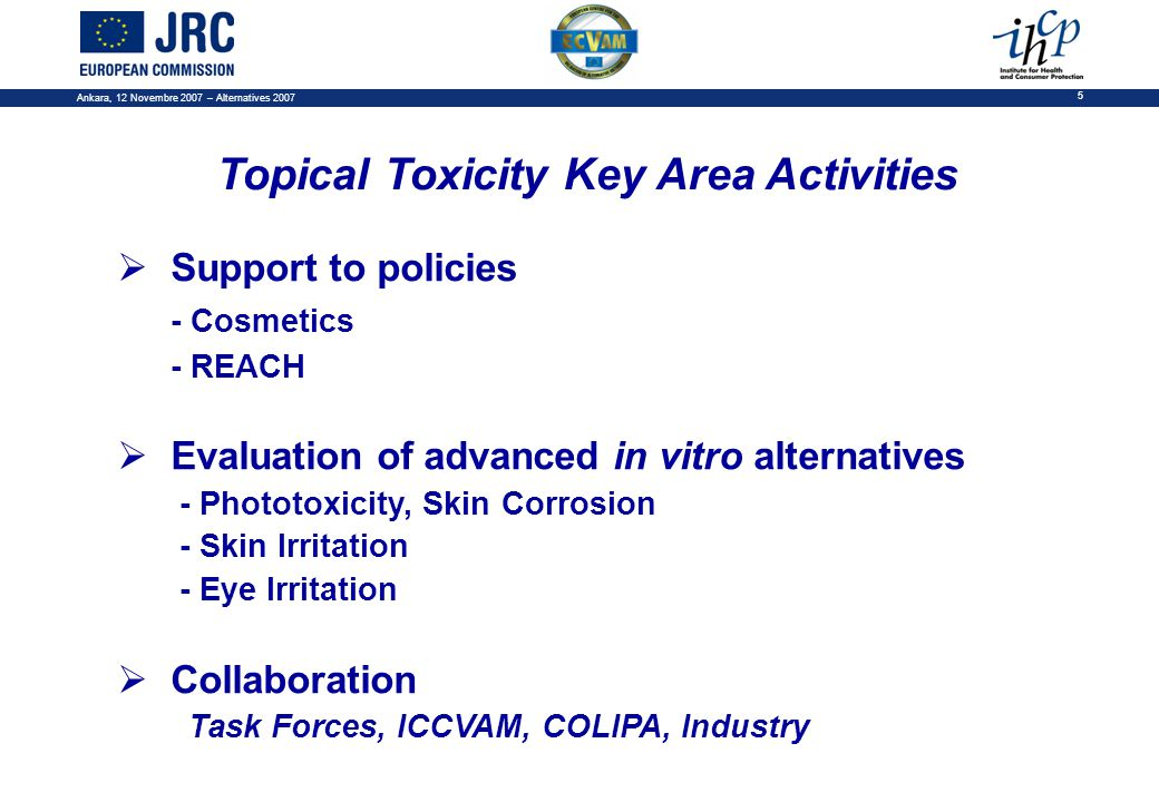 Ankara, 12 Novembre 2007 – Alternatives 2007 5  Support to policies - Cosmetics - REACH  Evaluation of advanced in vitro alternatives - Phototoxicity, Skin Corrosion - Skin Irritation - Eye Irritation  Collaboration Task Forces, ICCVAM, COLIPA, Industry Topical Toxicity Key Area Activities