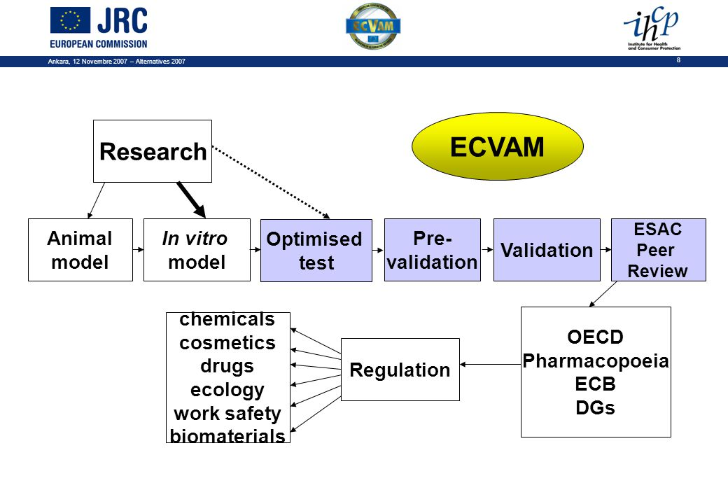 Ankara, 12 Novembre 2007 – Alternatives 2007 8 ECVAM Pre- validation Validation ESAC Peer Review Research Animal model In vitro model OECD Pharmacopoeia ECB DGs Regulation chemicals cosmetics drugs ecology work safety biomaterials Optimised test