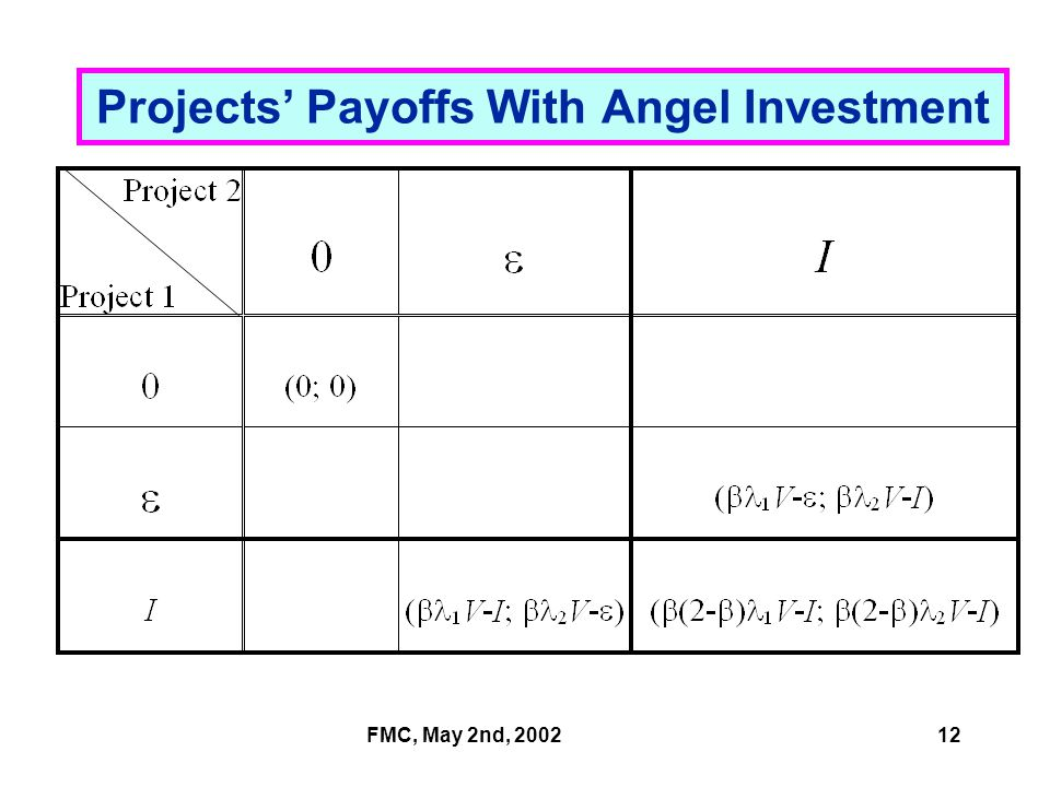 FMC, May 2nd, 200212 Projects' Payoffs With Angel Investment