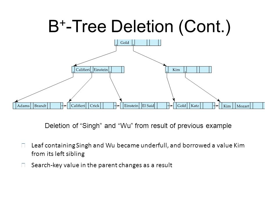 "B + -Tree Deletion (Cont.) Deletion of ""Singh"" and ""Wu"" from result of previous example n Leaf containing Singh and Wu became underfull, and borrowed"