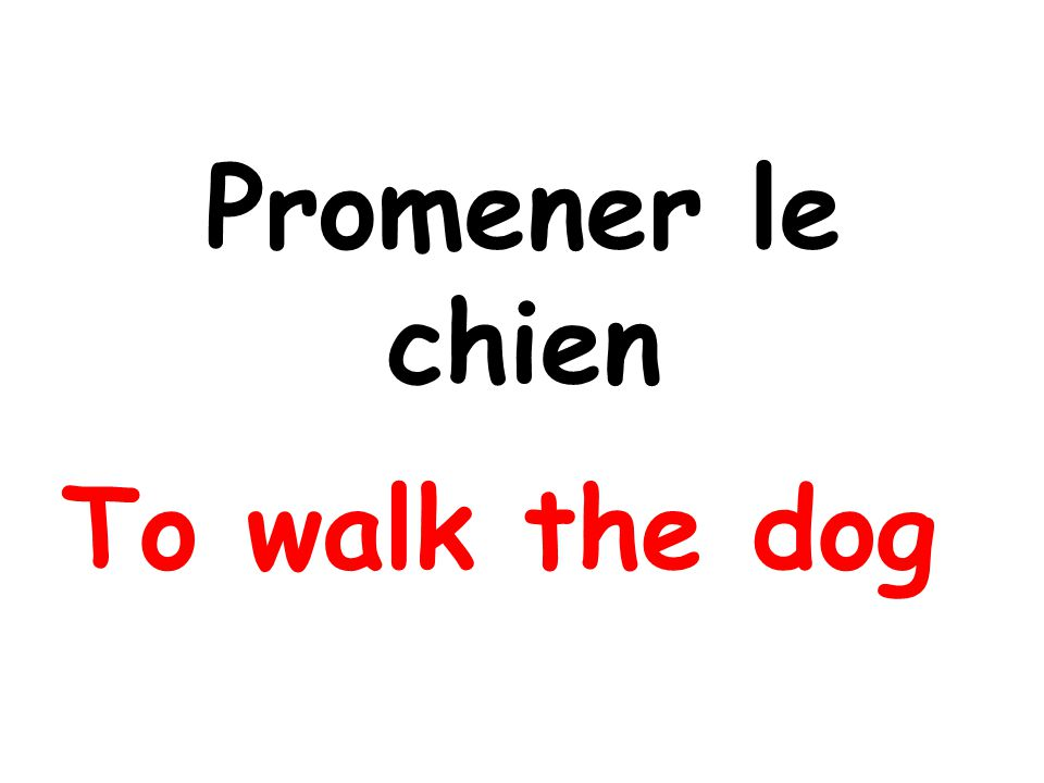 Promener le chien To walk the dog