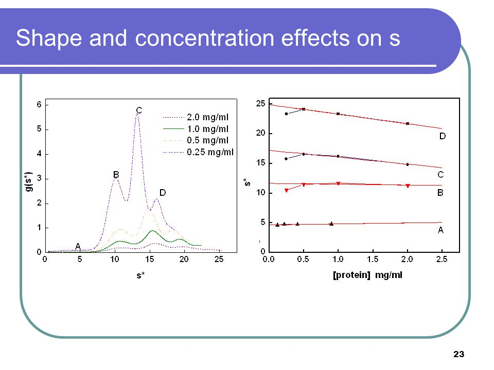 23 Shape and concentration effects on s