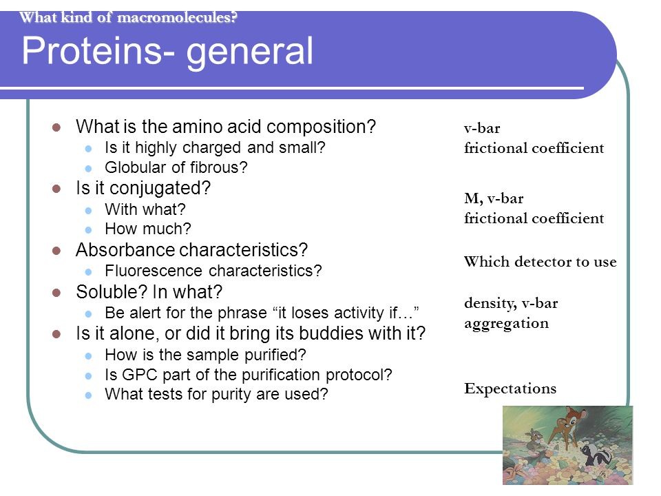 39 Proteins- general What is the amino acid composition.
