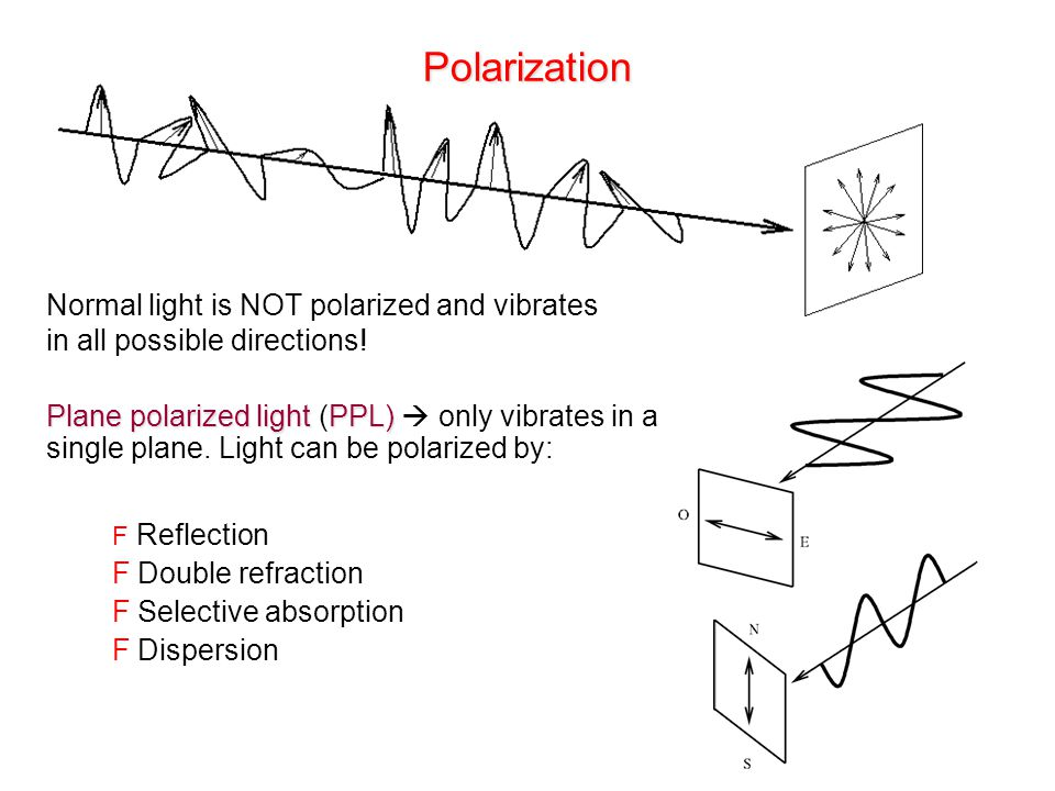 Polarization Plane polarized lightPPL) Plane polarized light (PPL)  only vibrates in a single plane. Light can be polarized by: F Reflection F Double