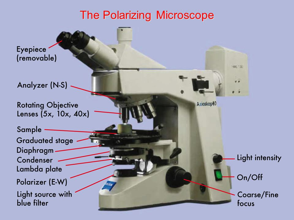 The Polarizing Microscope