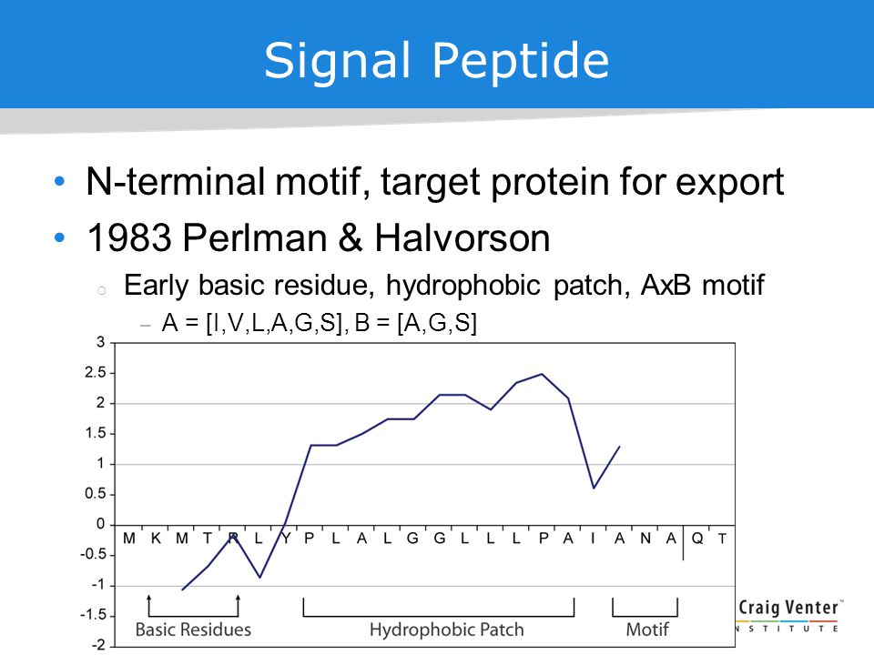 Signal Peptide N-terminal motif, target protein for export 1983 Perlman & Halvorson  Early basic residue, hydrophobic patch, AxB motif – A = [I,V,L,A,G,S], B = [A,G,S]