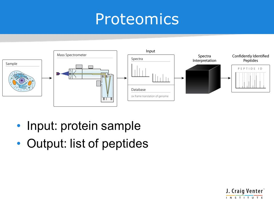 Proteomics Input: protein sample Output: list of peptides