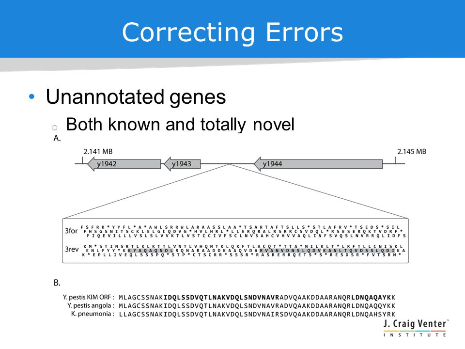 Correcting Errors Unannotated genes  Both known and totally novel