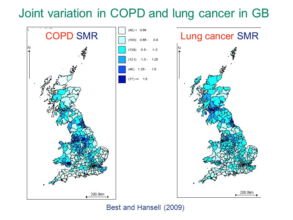 COPD SMR Lung cancer SMR Joint variation in COPD and lung cancer in GB Best and Hansell (2009)