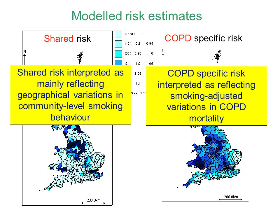 Shared risk Modelled risk estimates COPD specific risk Shared risk interpreted as mainly reflecting geographical variations in community-level smoking behaviour COPD specific risk interpreted as reflecting smoking-adjusted variations in COPD mortality