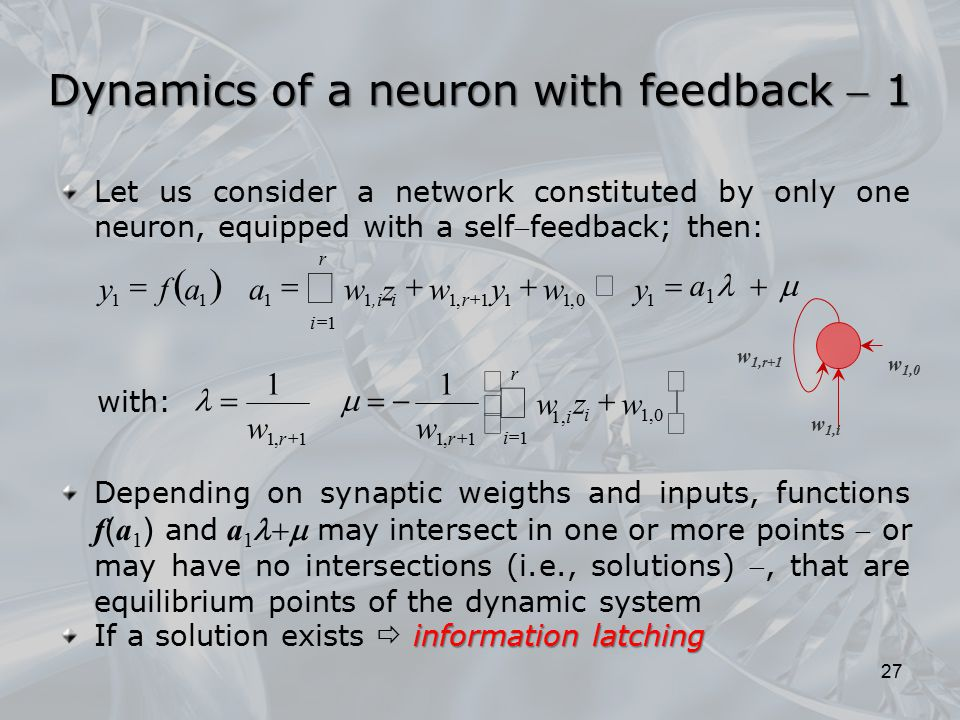 Let us consider a network constituted by only one neuron, equipped with a selffeedback; then: Depending on synaptic weigths and inputs, functions f (