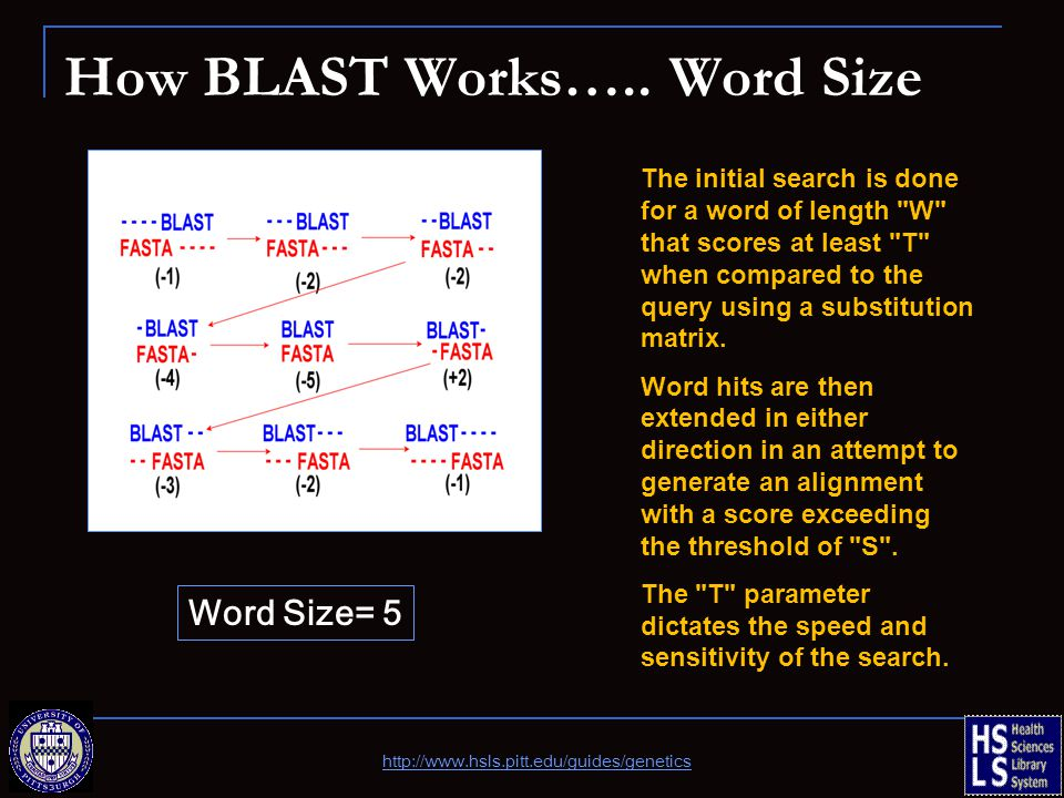 How BLAST Works…..