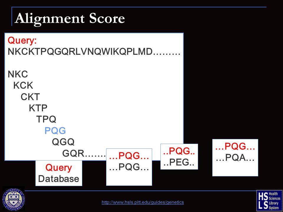 Alignment Score Query: NKCKTPQGQRLVNQWIKQPLMD……… NKC KCK CKT KTP TPQ PQG QGQ GQR…….. …PQG…..PQG....PEG.. …PQG… …PQA… Query Database http://www.hsls.pi
