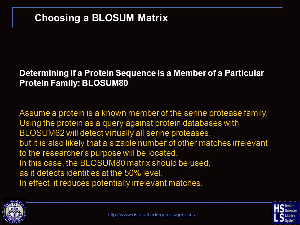 Determining if a Protein Sequence is a Member of a Particular Protein Family: BLOSUM80 Assume a protein is a known member of the serine protease family.