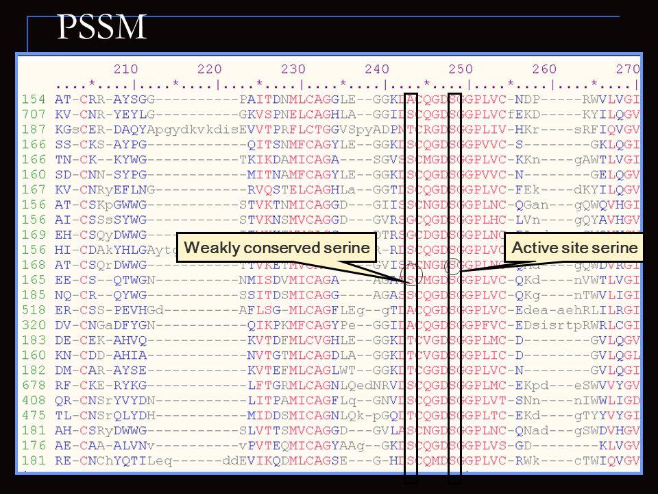 PSSM Weakly conserved serineActive site serine