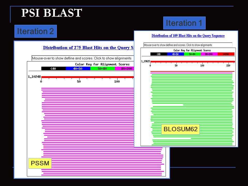 PSI BLAST Iteration 2 Iteration 1 PSSM BLOSUM62