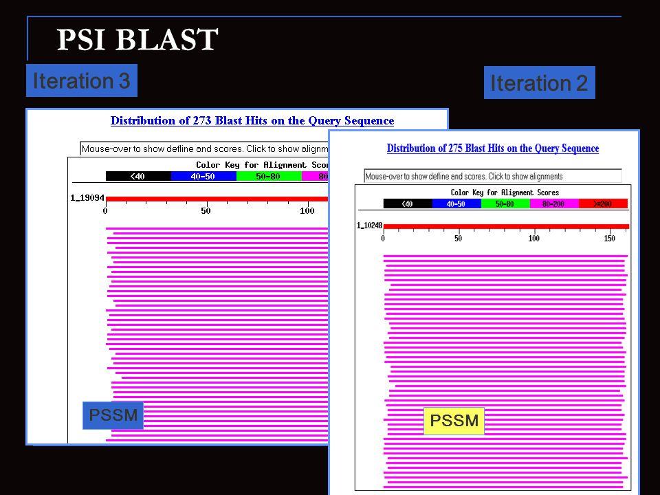 PSI BLAST Iteration 3 Iteration 2 PSSM