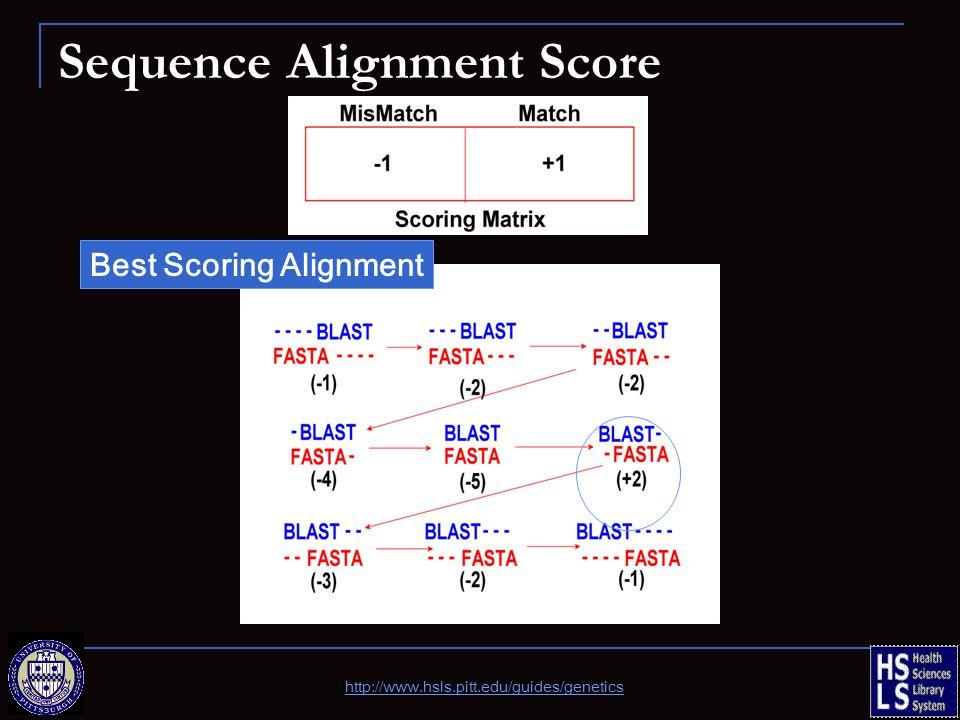 Sequence Alignment Score Best Scoring Alignment http://www.hsls.pitt.edu/guides/genetics