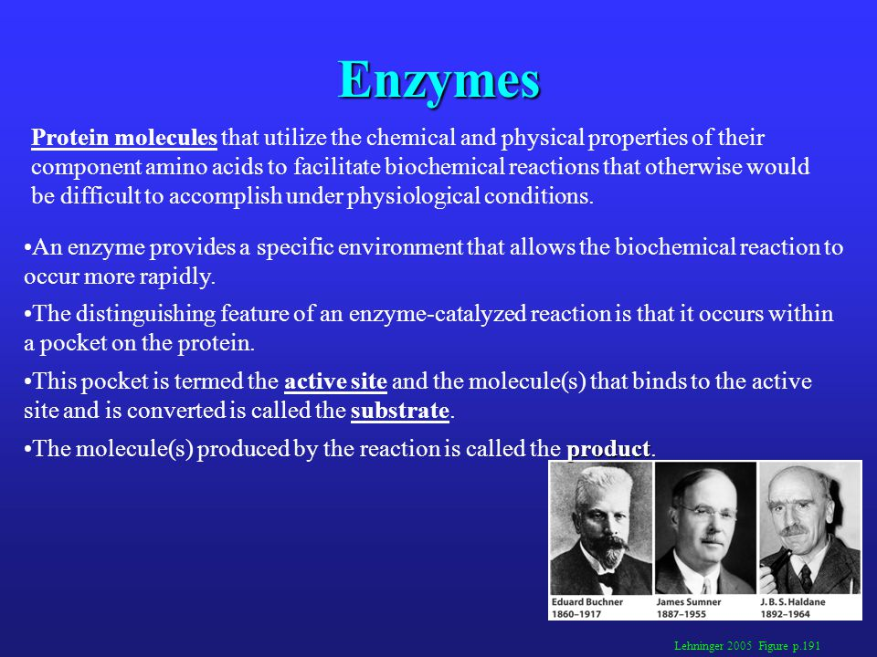 Enzymes: General Properties Enzymatically catalyzed reactions: are typically 10 6 to 10 12 times more rapid than the corresponding uncatalyzed reactions.