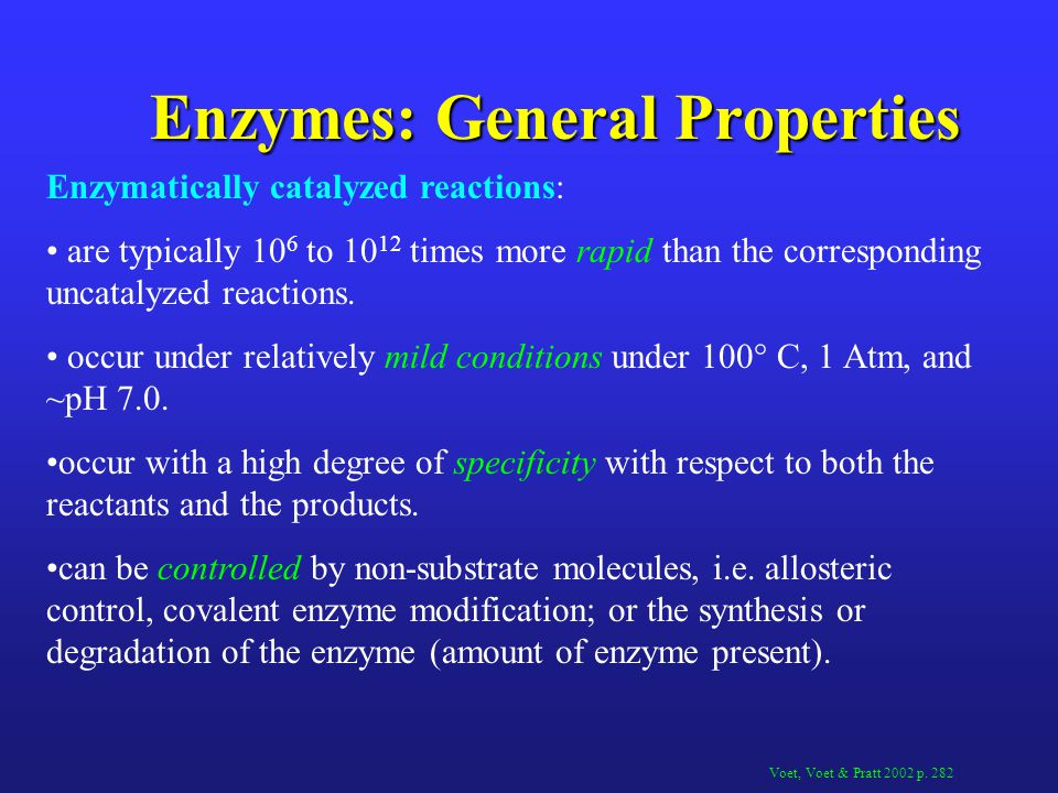 Enzyme Regulation Control of Enzyme availability Cells control the rate of enzyme synthesis and degradation and thus can control the amount of enzyme present.
