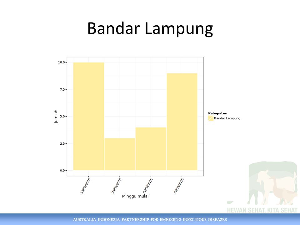 AUSTRALIA INDONESIA PARTNERSHIP FOR EMERGING INFECTIOUS DISEASES Bandar Lampung