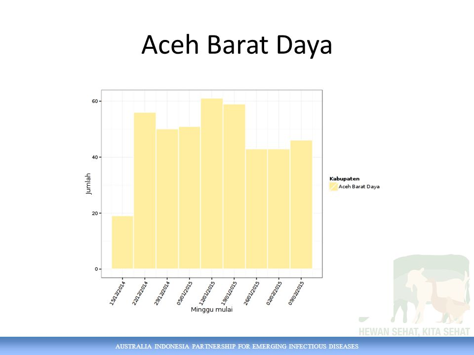 AUSTRALIA INDONESIA PARTNERSHIP FOR EMERGING INFECTIOUS DISEASES Aceh Barat Daya