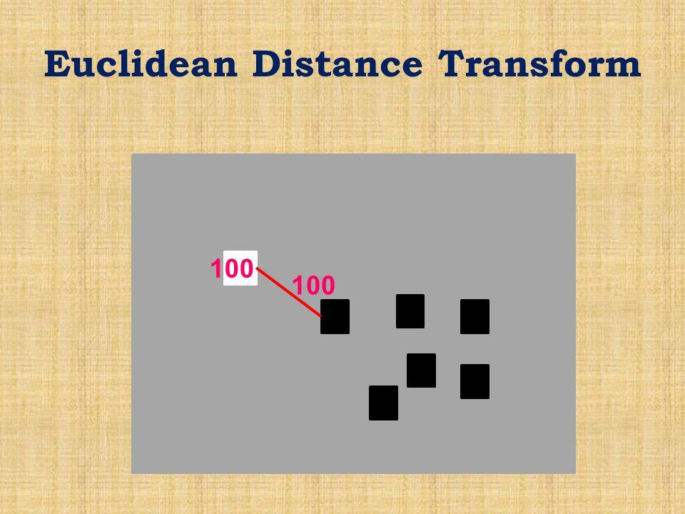 Euclidean Distance Transform 100