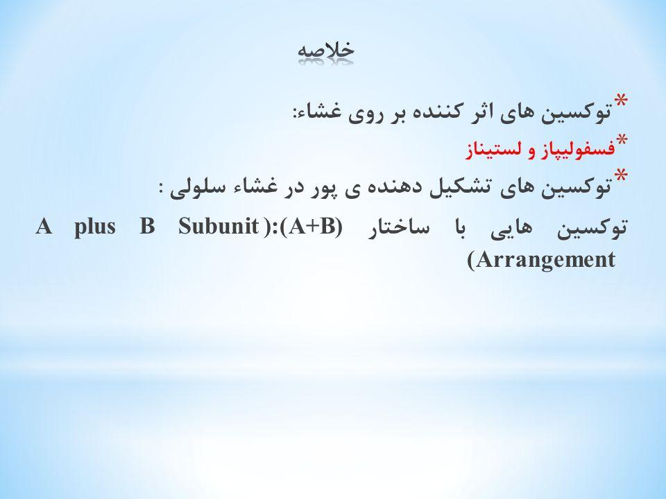 * توکسین های اثر کننده بر روی غشاء : * فسفولیپاز و لستیناز * توکسین های تشکیل دهنده ی پور در غشاء سلولی : توکسین هایی با ساختار (A+B):(A plus B Subuni