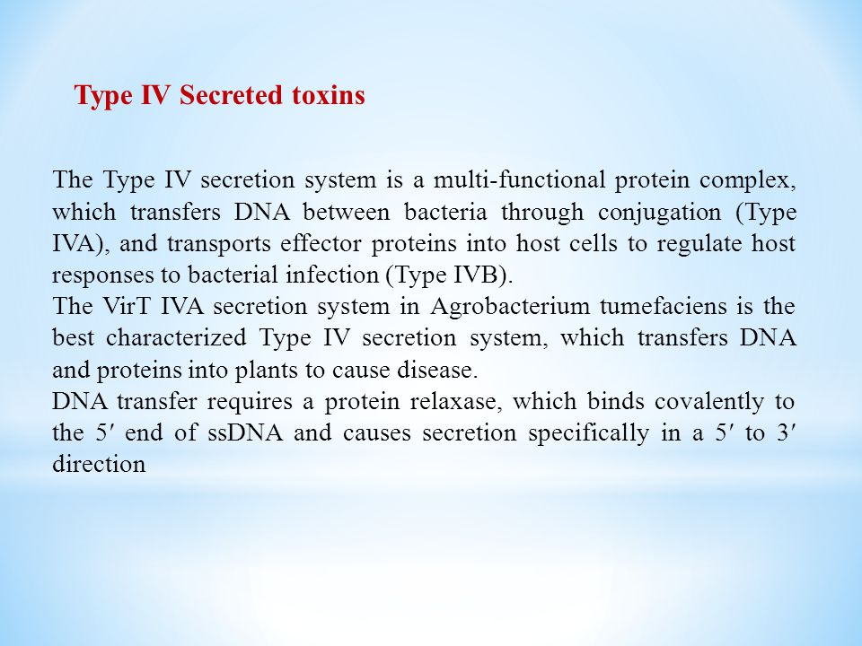 Type IV Secreted toxins The Type IV secretion system is a multi-functional protein complex, which transfers DNA between bacteria through conjugation (