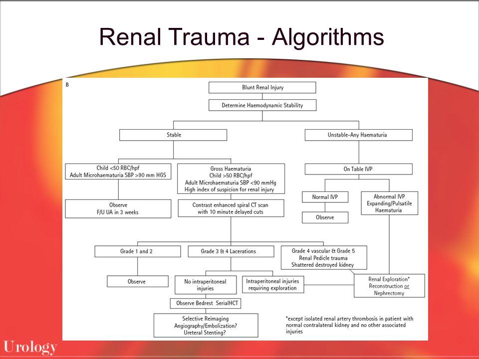 Renal Trauma - Algorithms