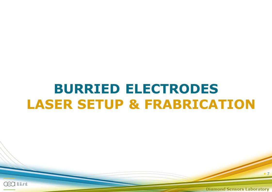 Diamond Sensors Laboratory BURRIED ELECTRODES LASER SETUP & FRABRICATION 7