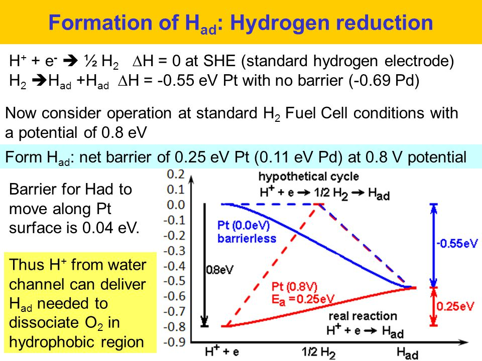 Formation of H ad : Hydrogen reduction H + + e -  ½ H 2  H = 0 at SHE (standard hydrogen electrode) H 2  H ad +H ad  H = -0.55 eV Pt with no barrier (-0.69 Pd) Now consider operation at standard H 2 Fuel Cell conditions with a potential of 0.8 eV Barrier for Had to move along Pt surface is 0.04 eV.